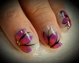 Tri color ed flowers