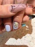 Fairy Seashell
