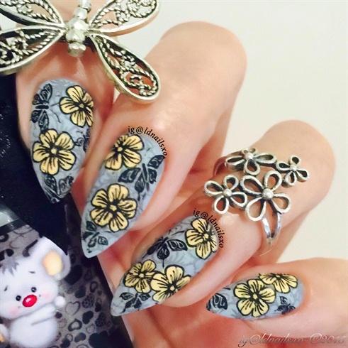 Open Flowers & Fluttering Butterflies