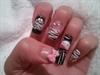 Hello Kitty Zebra