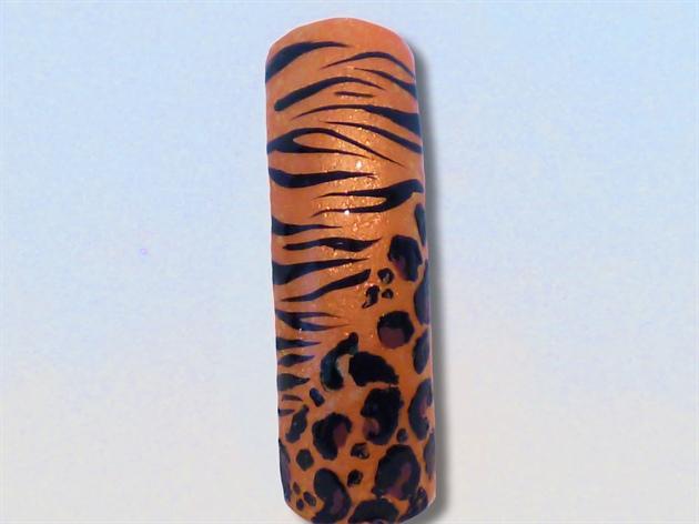 Zebra Cheetah
