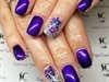 Purple Dried Flowers