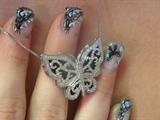 winged wonder