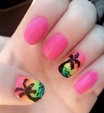Rainbow Palm Trees