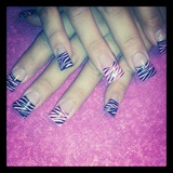 Zebra Flared