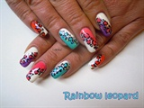 Rainbow leopard nails