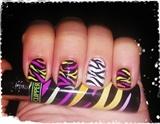Crazy Zebra Nail Art