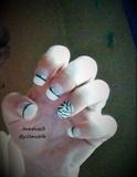 french zebra