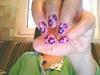 lavender flawer