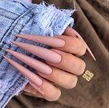 Nude Matte Long Stiletto Nails