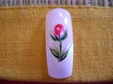 rosa en french