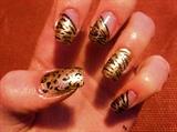 Golden zebra (cheetah on the side)
