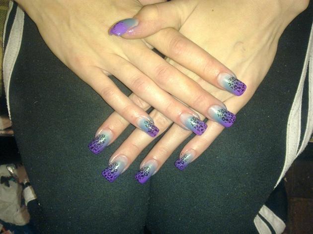 purple & blue leopard