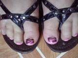 pink zibra