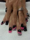 Black Pink And Zebra