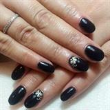 Black, White buterfly