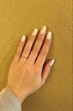 White & Gold 🌞