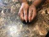 Orange & Black Stamping
