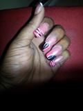 Pink and blk zebra