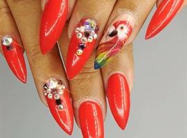 nail art: Parrot Nails