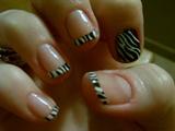 french tip zebra