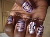 Holo Purple Zebra Stripes
