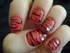 Peachy Glitter Zebra
