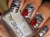 Zebra Rose