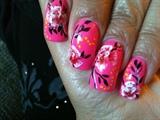 Exotic Pink