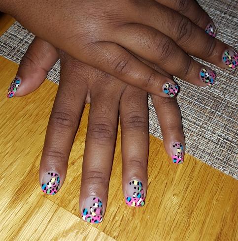 Multi Color Leopard