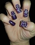 Purple Rhinestone Leopard