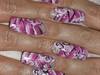 Pink blossem