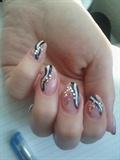 sexy zebra
