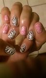 Zebra with Pink Zest