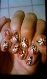 Ladybugs on Daisies
