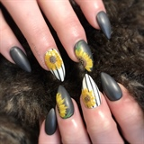 Matte Sunflower