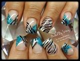 Blue Sky Zebra