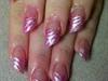 Pink glitter lipsticks & silver zebra