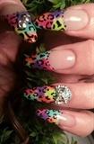 multi leopard print