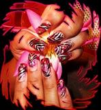Niki pink red zebra