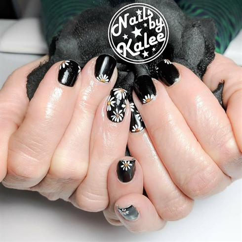 daisies over black