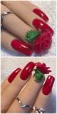 3D acrylic Rose