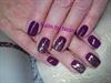 Violet  fancy