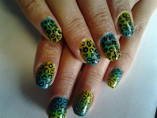 Blue-Yellow Leopard