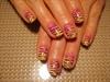 Yellow-Pink Zebra