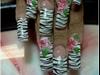 Zebra n 3D
