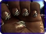 Angle Zebra French