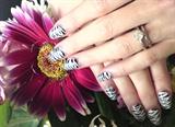 Hand paintedzebra