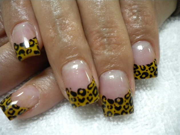 Leopard Spots