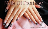 Humbug, Nails Of Promise